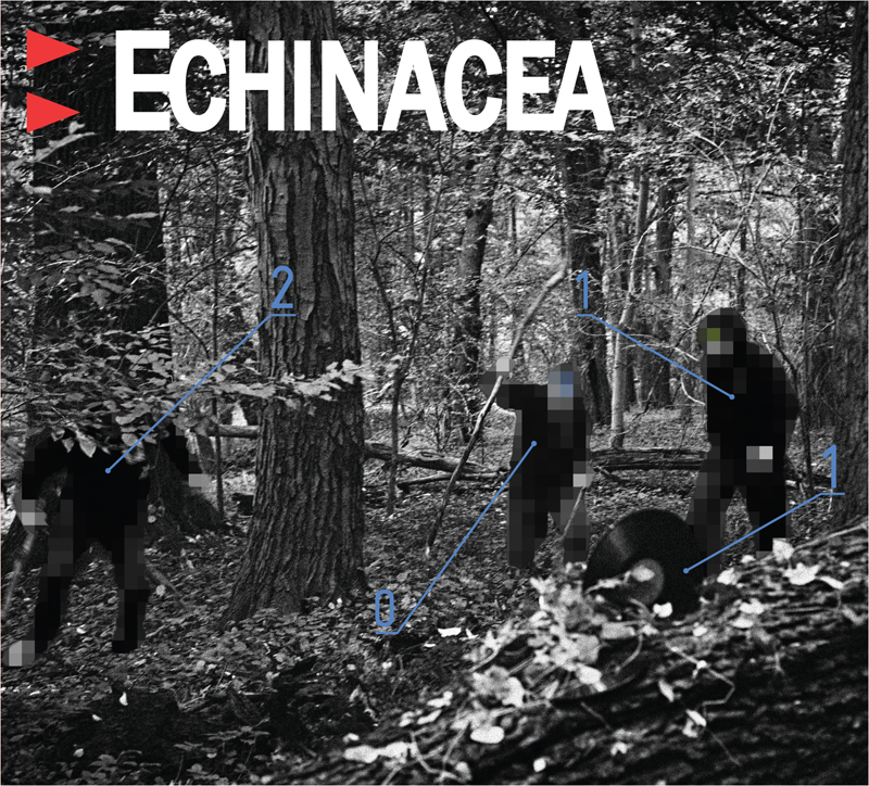 Echinacea okładka