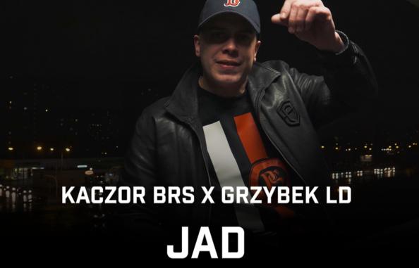 """Kaczor BRS i Grzybek LD prezentują """"Jad"""""""