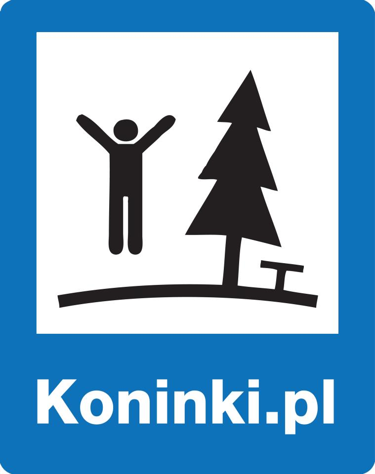 Puchar Polski w Downhillu #2 - Koninki