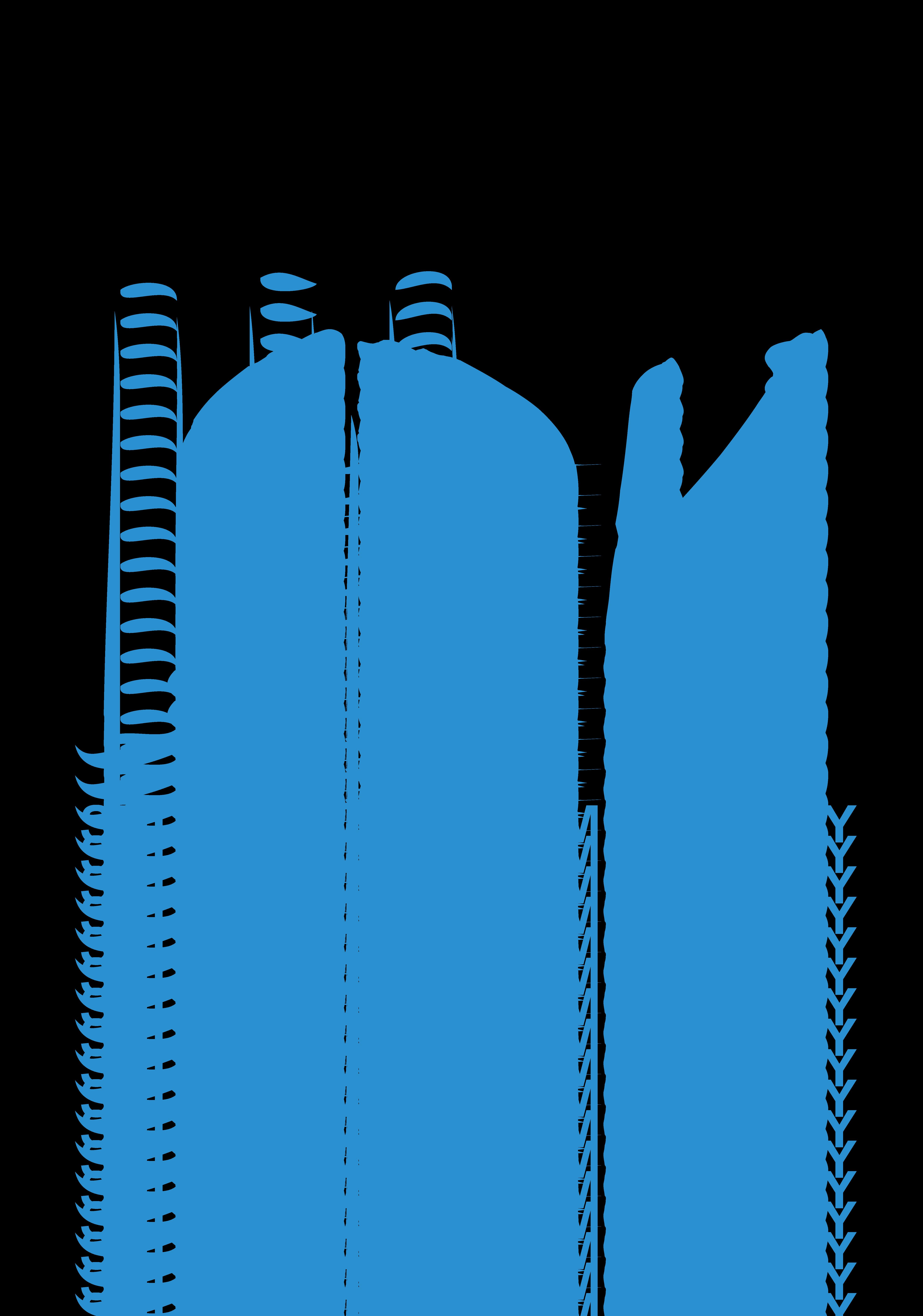 Sulechowski Dom Kultury