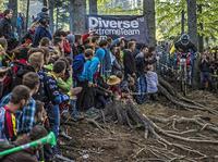 Diverse Downhill Contest, Mistrzostwa Europy w Wiśle