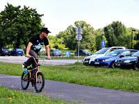 Burek przed Centrum Olimpijskim w Warszawie