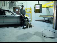 Michał Kisiel zastrzelił własnego psa na planie klipu