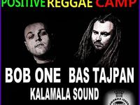 Positive Reggae Camp