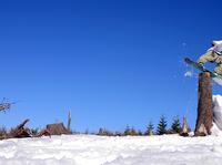 Snowboarding - 100% pure fun