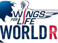 Światowy Bieg Wings For Life World Run – przygotuj się do startu!