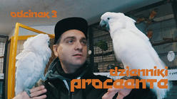 Dzienniki Proceente - odc. 3
