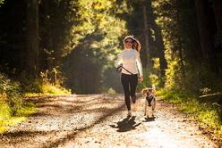 Produkty niezbędne na spacer z psem!