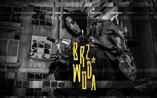 Rap DAMA x BRZ DIIL GANG