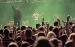 Pawbeats - cykl oficjalnych videorelacji z koncertu Utopia Live