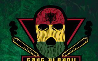 Gang Albanii nagrywa Reggae
