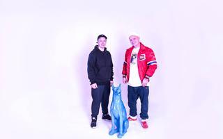 APP: Sensi & DJ Kebs feat. Agata Kapalska, Hades