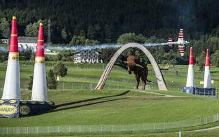 Red Bull Air Race - wszystko gotowe w Spielberg